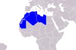 Arab_Maghreb_Union